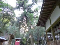 s3小倉神社P1050670