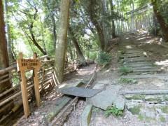 s2竹林のこみちP1020871